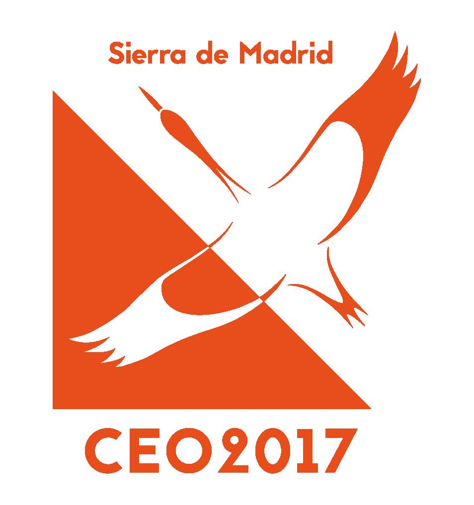 logo_web_rgb_sinfondo 2